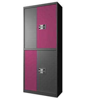 BM04 National Baotong Double-door Purple Set Secret Cabinet